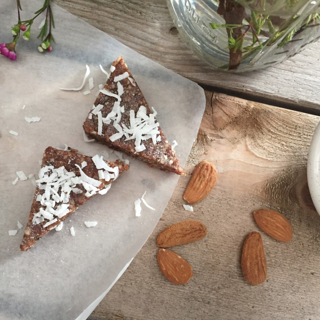 Coconut and Cacao Raw Bars